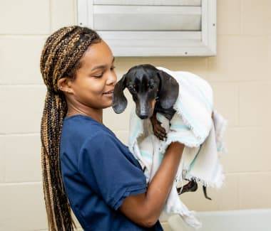 Bathing & Nail Trims | Friendly Animal Clinic | Greensboro Vet