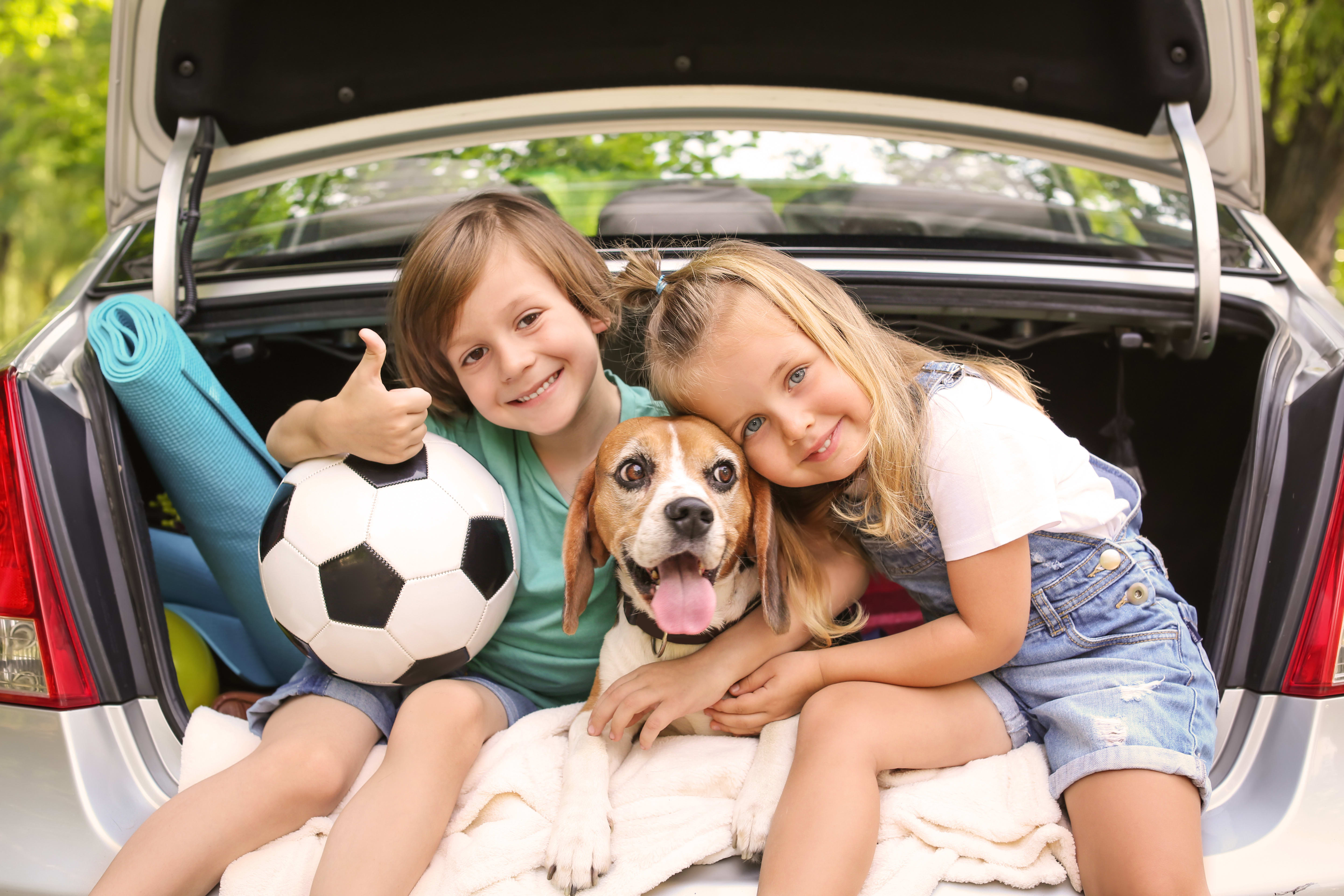 How to Choose a Dog for Your Family with Kids, Greensboro Vet